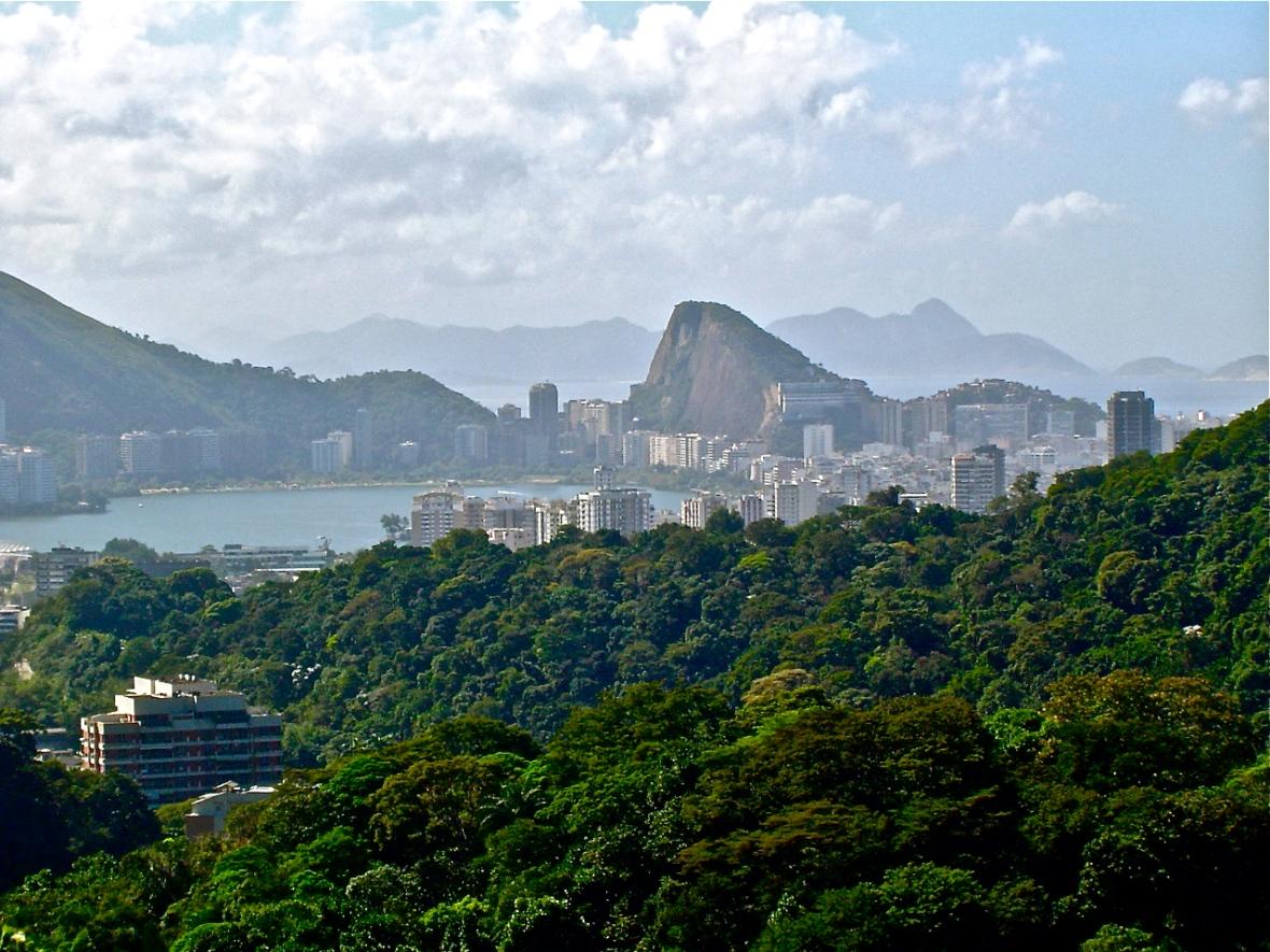 AmSch Rio View 2