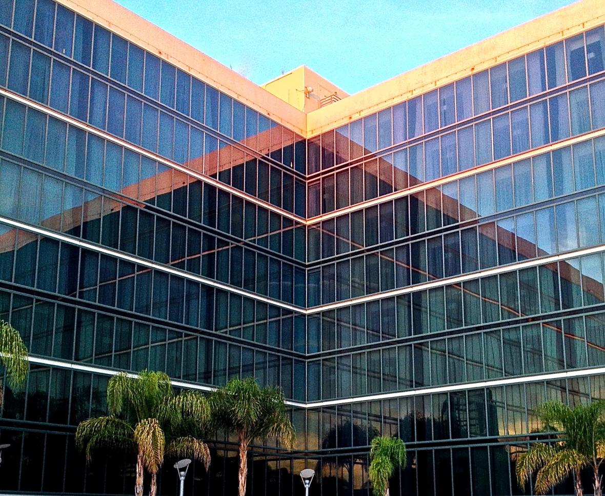 Hilton Reflections