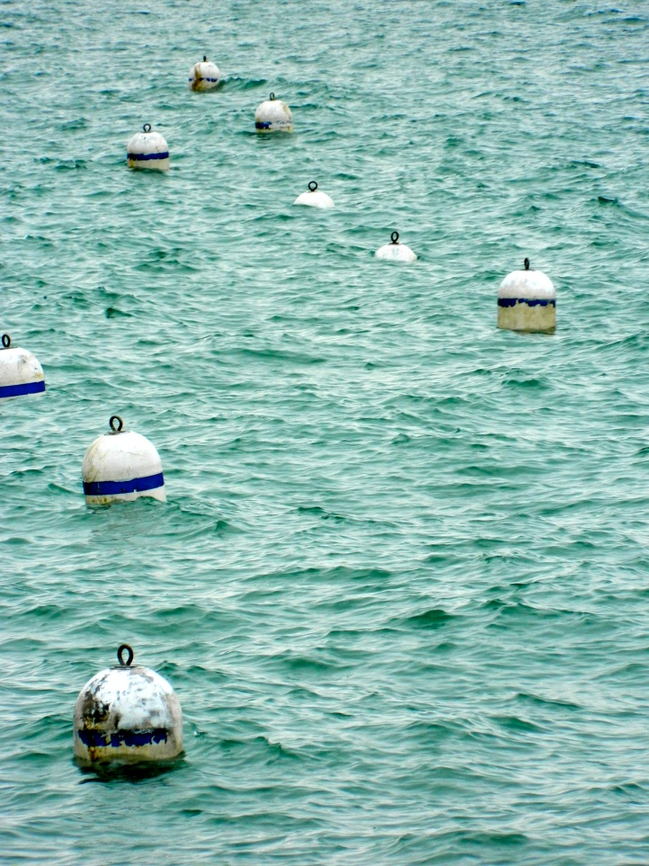 Lake Buoys Chicago