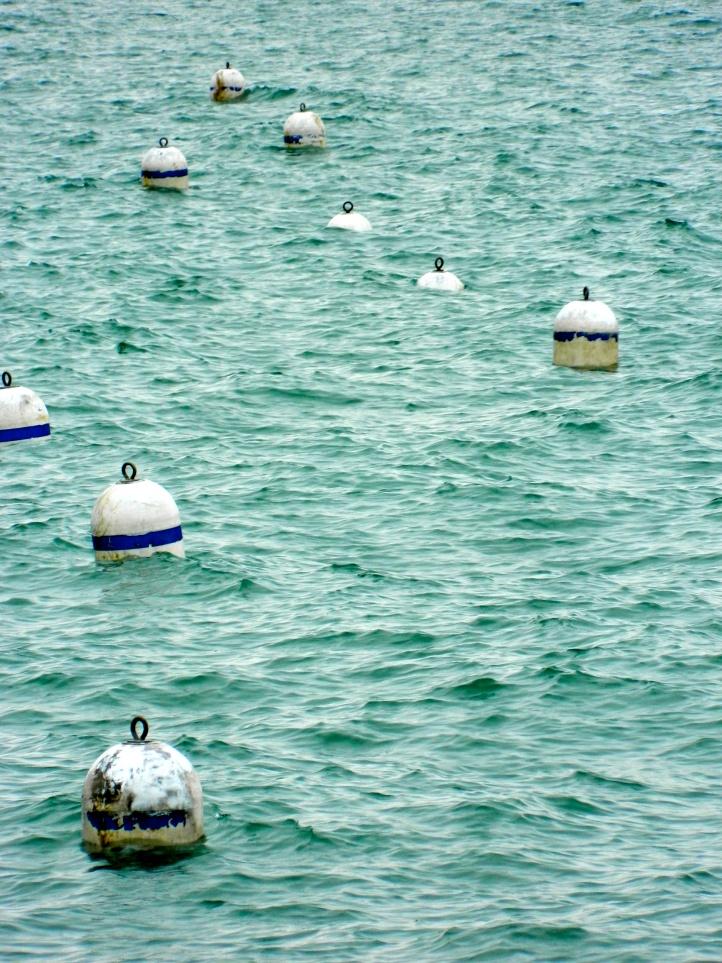 Lake Buoys Chicago