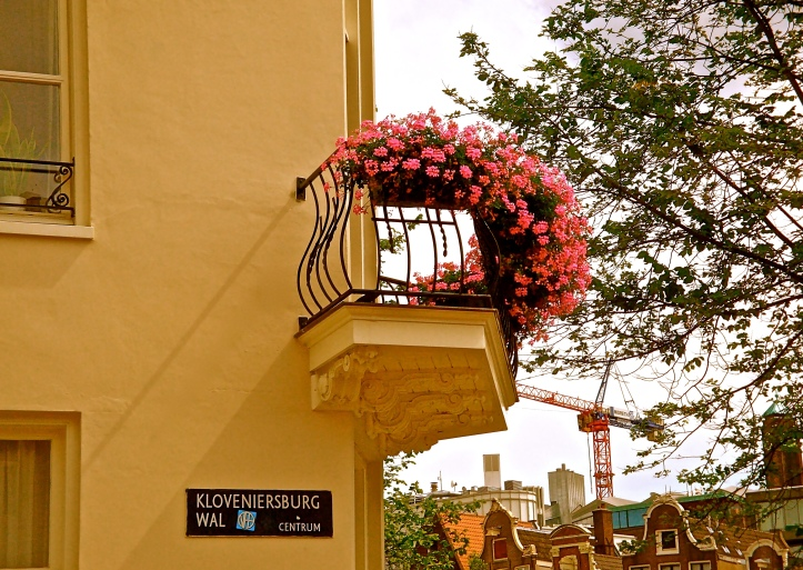 Street Sign and Flowers