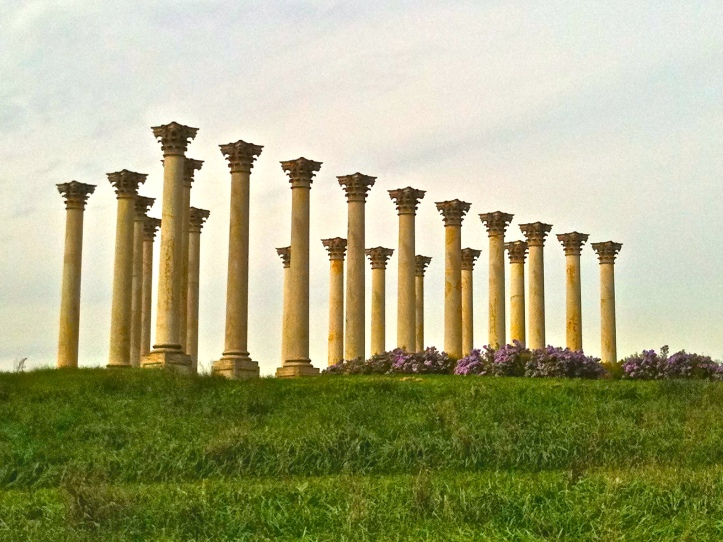 Columns and Purple