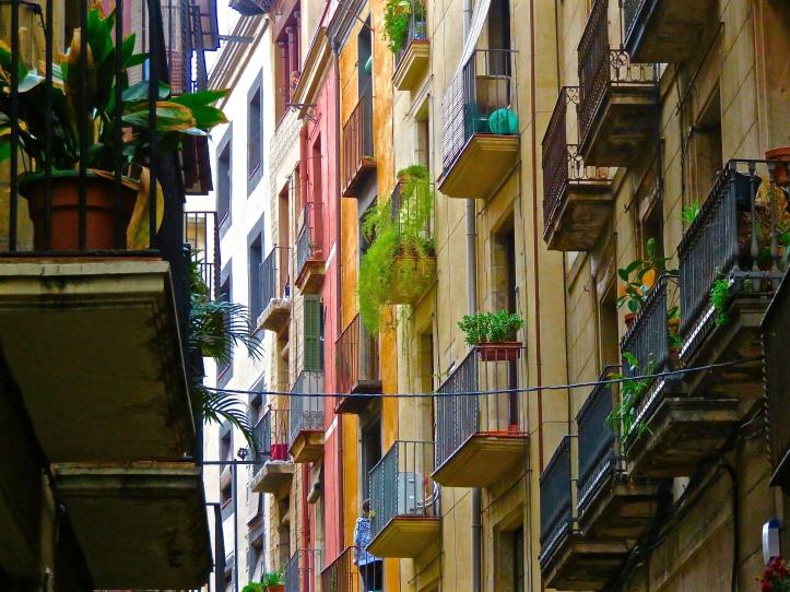 Balconies Plants Color